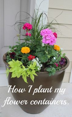How I planted my front door flower planter. Steps, soil hints and all flowers used are described in this article.