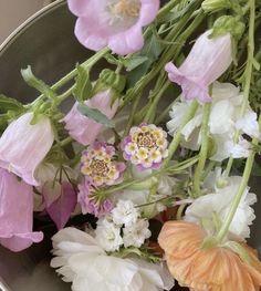 Dark Flowers, Pastel Flowers, Simple Flowers, Vintage Flowers, Yellow Flowers, Beautiful Flowers, Ranunculus Flowers, Exotic Flowers, Pink Peonies