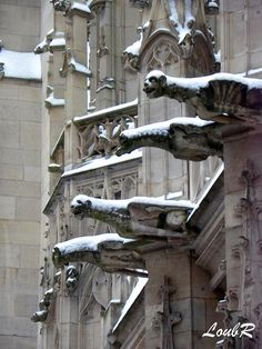 Gargoyles with snow, Rouen, France Gargoyles are said to frighten off and protect those that it guards, such as a church, from any evil or harmful spirits. Used as water spouts on buildings. Gothic Buildings, Gothic Architecture, Architecture Details, Gothic Gargoyles, Le Havre, Green Man, Stone Carving, Mythical Creatures, Museum