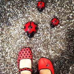 Cute!!!! Ladybugs came running to meet my shoes today :)