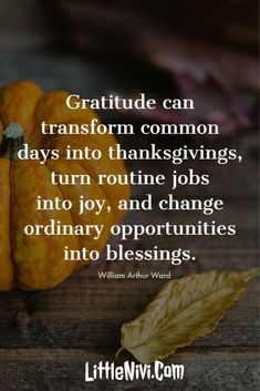 27 Inspiring Thanksgiving Quotes with Happy Images