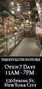 The Evolution Store