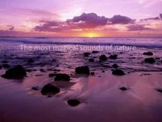 The best meditation sounds in the world. BlissCoded sound.