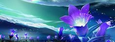 abstract purple flowers Facebook banner upload