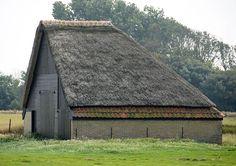Zuid-Haffel op Texel - schapenboet op  Zuid Haffel 44