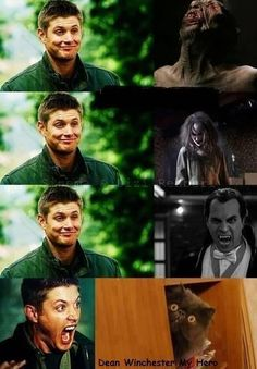 Wendigos; Bahaha! Humans; Uh, really? Vampires; I got this shit! Cats; AHHHHHH! ...That was scary! Lmao! #Supernatural