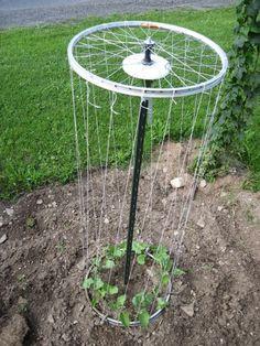 Bicycle Rim T-Post Trellis, adds garden art. Garden Bar, Veg Garden, Vegetable Garden Design, Garden Trellis, Garden Planters, Garden Tools, Garden Club, Potager Bio, Diy Garden Projects