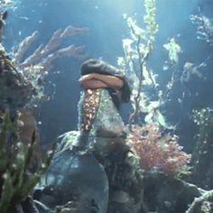 driflloon: sade: no ordinary love sade mermaid best Mermaid Gifs, Mermaid Art, Mermaid Pictures, Mermaids And Mermen, Gif Animé, Merfolk, Aesthetic Gif, Mythical Creatures, Under The Sea