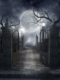 Grave Yard / 730, vinyl wall backdrop, Halloween, goth