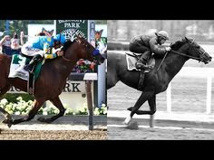 The Stride of a Champion: How does American Pharoah compare to Secretariat? - Performance Genetics