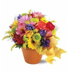 Delight someone today with this darling blend of seasonal flowers mounded in a rustic garden pot.