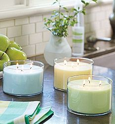 FRESH HOME BY PARTYLITE®  Bluer Skies™ Greener Grass™ Brighter Days™ Perfect Pet