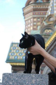 Saint Petersburg/Russia
