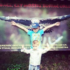 #orzeł #zoo #wings #bird