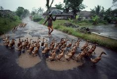 Steve McCurry: Right as Rain - Thisispaper Magazine