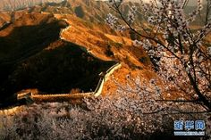 MustSee Attractions In Beijing Traveling In China - 10 must see attractions in beijing