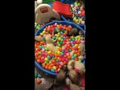 """The """"Original"""" ferrets playing and wrestling in a pool of Easter eggs Part 1 - YouTube"""