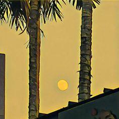 #fullmoon #moon #fullmoon #nature #naturelovers #sunset #prisma #minimalist #minimal