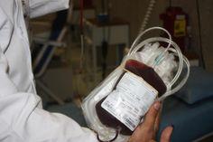 #Solo el 1% de donadores de sangre es altruista: IMSS - Quadratín Michoacán: Quadratín Michoacán Solo el 1% de donadores de sangre es…