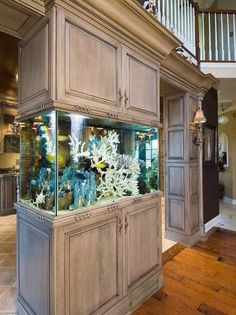 Spectacular built-in aquarium with tropical fish and corals
