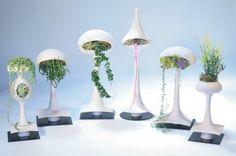 Modern Futuristic  Mod Plant Golly Goodness