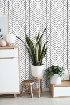 Wallpaper Minimalist Peel and Stick or Traditional Textured Wall paper Abstract Custom size and colo