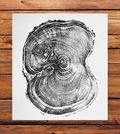 Tree Ring Pine Wood Print