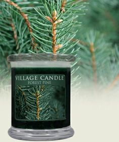 Village candle Forest Pine