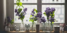 6 ways to make your home smell amazing