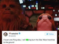 The internet is freaking out over Porgs the most adorable new creature in Star Wars (18 photos)