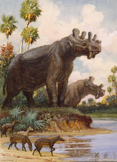The Six-horned Uintatheres Thrived by Charles R. Knight. Discovered by both Marsh and Cope.