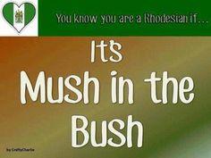 mush in the bush All Nature, Life Words, Zimbabwe, Homeland, Childhood Memories, Fun Facts, Birth, Nostalgia, Paradise
