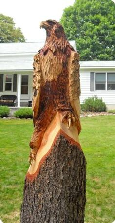 Stump Carvings