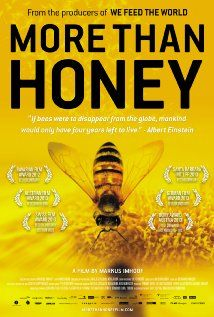 """""""More Than Honey"""" (2012). An in-depth look at honeybee colonies in California, Switzerland, China and Australia. An informative, absolutely fascinating movie, with beautiful photography."""