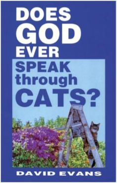 Does God Ever Speak through Cats?: David Evans: This is a book about Christian spirituality and cats. When David Evans moved into a new house in Los Angeles, he focused on a stray cat that was living in the backyard. David Evans, Religious Books, Kindle Cover, This Is A Book, Book Title, My Books, Read Books, All About Time, Funny Pictures