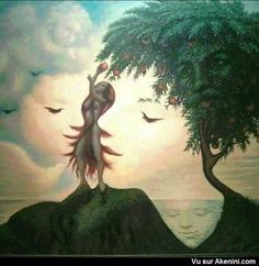 Akenini.com - Illusions Effets d'optiques images cachées - Optical Illusions hidden pictures