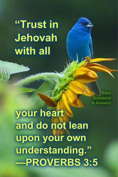 Trust in Jehovah and read the Bible daily to know Him better! He is always there for you! The Bible says not to lean on our own understanding of things but to look to Jehovah to guide our life through a study of His Word, the Bible.