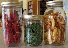 Dryed food...now line these gems up and use them for recipes or just to snack on.