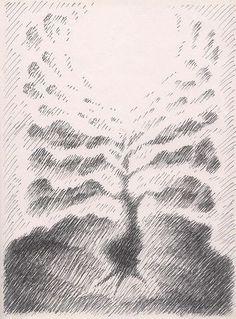 Sun Plant (pen & ink)