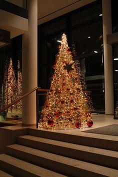Tannenbaum beleuchtet im Messefoyer -  christmas tree, illuminated