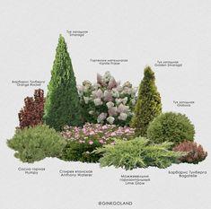 caroloslanoiex - 0 results for front yard landscaping Flower Garden Plans, Garden Design Plans, Small Garden Design, Small Garden Landscape, House Landscape, Evergreen Landscape, Landscape Plans, Outdoor Landscaping, Front Yard Landscaping