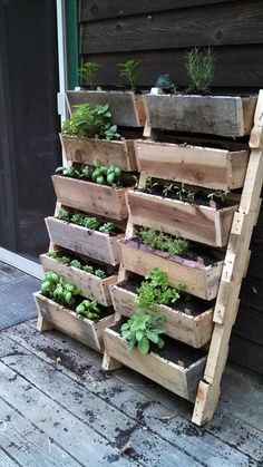 Pallet herb gardening, perfect for gardening within a small space. Always take advantage of empty vertical space--it will leave your balcony or patio looking clean, not cluttered.