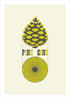 pine cone by michæl paukner, the number of spirals in either direction are two consecutive fibonacci numbers: 13 clockwise spirals and 8 counter clockwise spirals Golden Ratio Spiral, Fibonacci Golden Ratio, Fibonacci Spiral, Divine Proportion, Bokashi, Sacred Architecture, Motif Floral, Patterns In Nature, Sacred Geometry