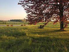 Le Pavillon de l'Orangerie I Maison d'hôtes I Beaune I Bourgogne | Actualités