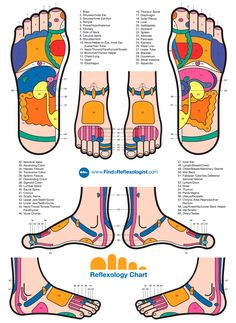 Reflexology/acupressure chart for the feet.