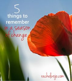Whether it's the weather, a job change or some other transition, things can quickly feel overwhelming when you're making adjustments.. Check out these five tips to remember in a season of change!