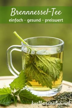 - Warum du öfter Brennnesseltee trinken solltest The nettle is one of the strongest domestic medicinal plants. With a simple tea with nettle leaves can ease many ailments. Calendula Benefits, Lemon Benefits, Coconut Health Benefits, Nettle Tea Benefits, Herbal Remedies, Natural Remedies, Nettle Leaf Tea, Types Of Tea, Matcha Green Tea