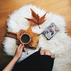 Imagen de coffee, autumn, and fall