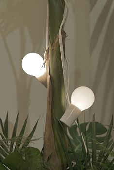 Ideal Home Show, Sconces, Wall Lights, Lighting, Home Decor, Chandeliers, Appliques, Decoration Home, Room Decor