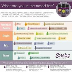 Scentsy Essential Oils- Which one?